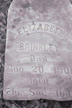 Elizabeth <i>Anderson</i> Brinkley