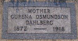 Gurena <i>Osmundson</i> Dahlberg
