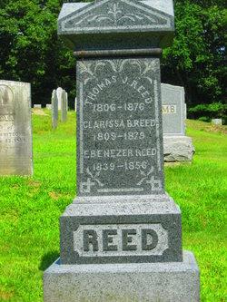 Thomas J Reed