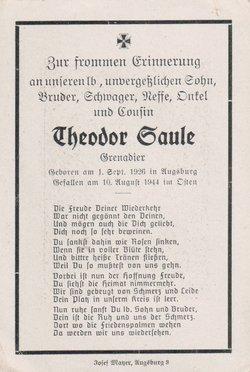 Theodor Theo Saule