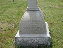 John W O'Connor