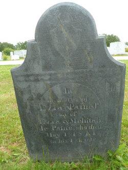 Ezra Paine, Jr