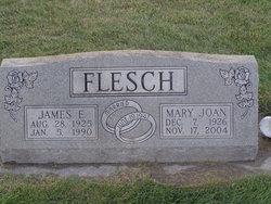 Mary Joan <i>Kendall</i> Flesch