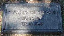 Cleo Ernest Wilson