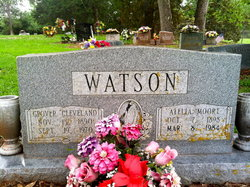 Grover Cleveland Watson