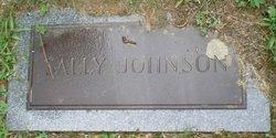 Sarah Ann Sally <i>Winters</i> Johnson
