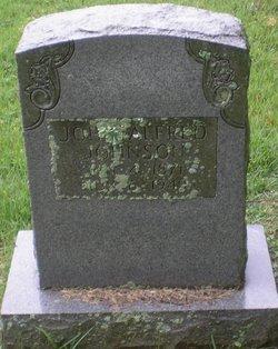John Alfred Johnson