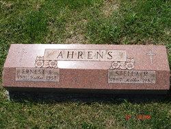 Stella M Ahrens