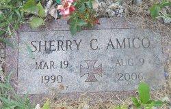 Sherry Conchin Amico