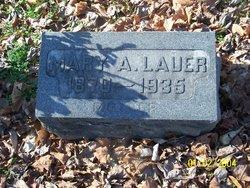 Mary A <i>Aichelmann</i> Lauer