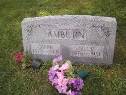 Carrie Luella <i>McGunegill</i> Amburn