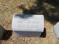 Alfred Arthur Pellman