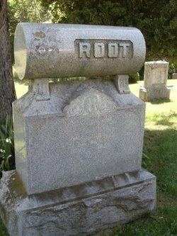 Mandana J Root