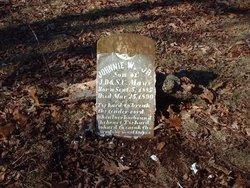 Johnnie W Mays, Jr