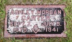Ashley Morgan Carter
