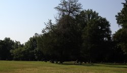 Shiloh CME Church Cemetery