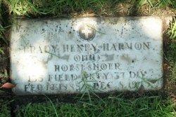Brady Henry Harmon