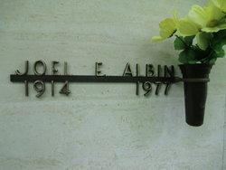 Joel E Albin