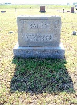 Sallie Elizabeth <i>Renfroe</i> Bailey