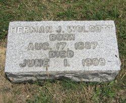 Herman J Wolcott