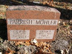 Amanda M <i>Wightman</i> Parrish