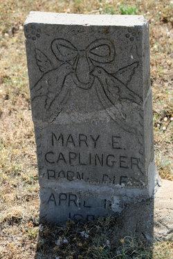 Mary E. Caplinger