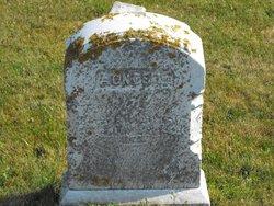 Agnes L <i>Amber</i> Seavey