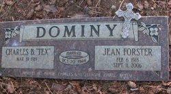 Jean Frances <i>Forster</i> Dominy