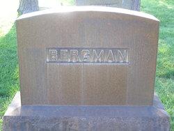 Vendla L. <i>Bergman</i> Jenkins