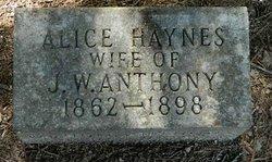 Alice <i>Haynes</i> Anthony