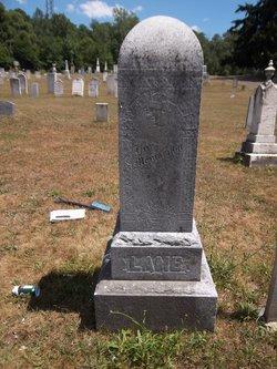 Catherine E Lamb