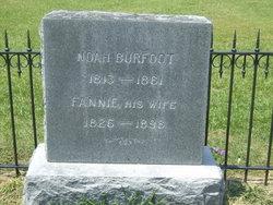 Noah Burfoot