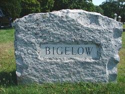 Edward David Bigelow