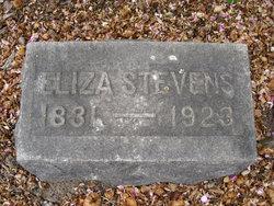 Eliza H <i>Higgins</i> Stevens
