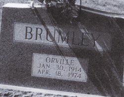 Orville Ray Brumley