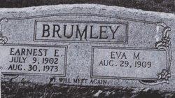 Earnest Everett Brumley