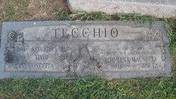 Livio Tecchio