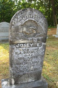 Josey E. Bramlitt