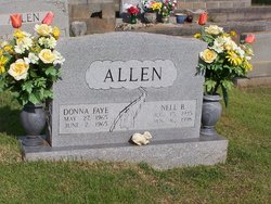 Donna Faye Allen