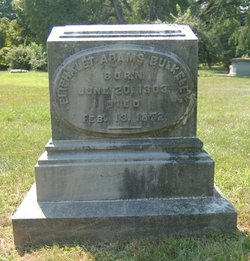 Eliphalet Adams Bulkeley
