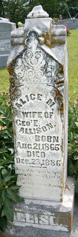 Alice M. <i>Lyon</i> Allison