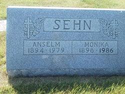 Anselm Sehn