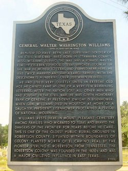 Walter Washington Williams