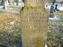 Bertell Cadwallader