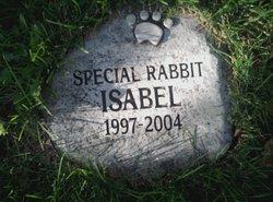 Isabel Rabbit
