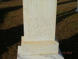 Elizabeth Jane Bedgood