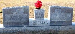 Lizzie Abbigill <i>Arnold</i> Freeman