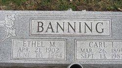 Carl Leo Banning