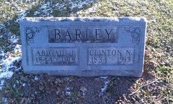 Abigail J. <i>Norton</i> Barley