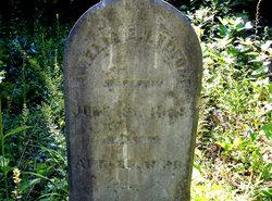 Amelia E Ledford